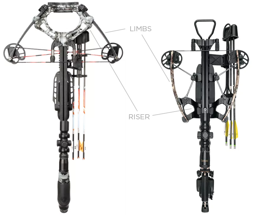 Positions of the riser and the limbs on a reverse-draw and a forward-draw crossbows
